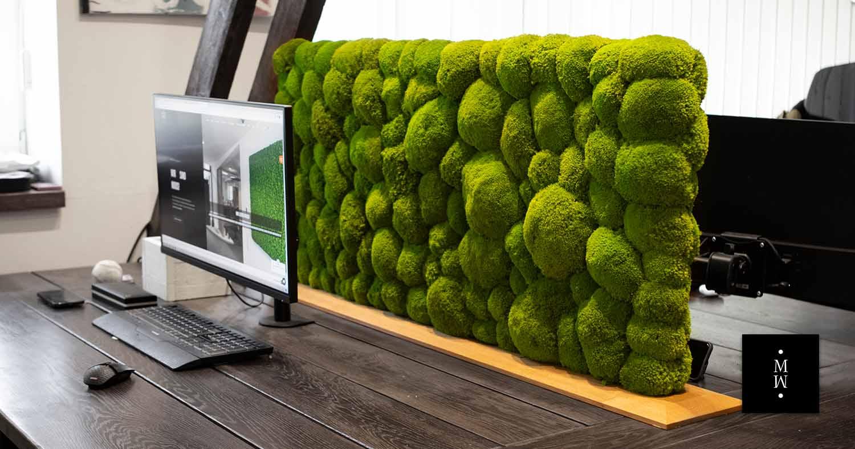 Raumteiler aus Ballenmoos auf Schreibtisch