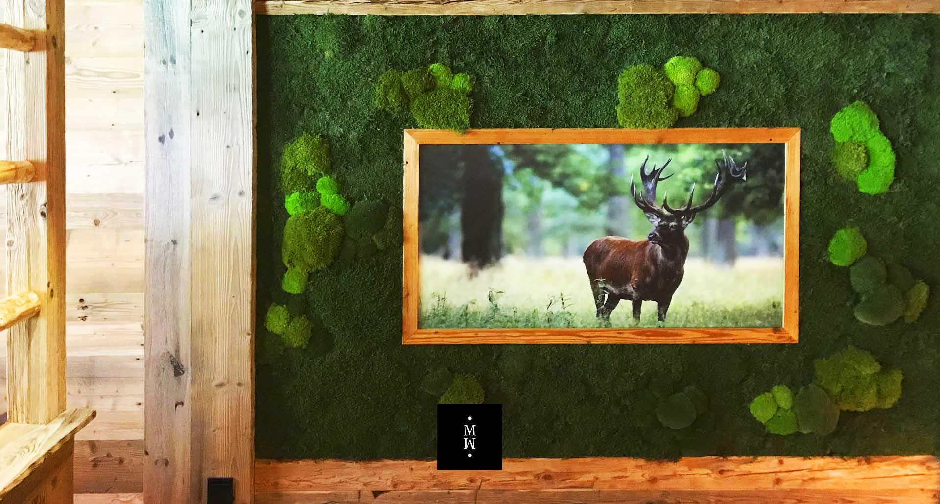 Bild mit einem Hirsch in Waldmoos und Ballenmoos gerahmt