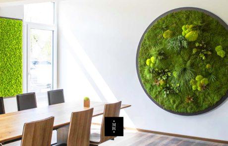 Moosbild Rund Ballenmoos Waldmoos Pflanzen Durchmesser 200 cm