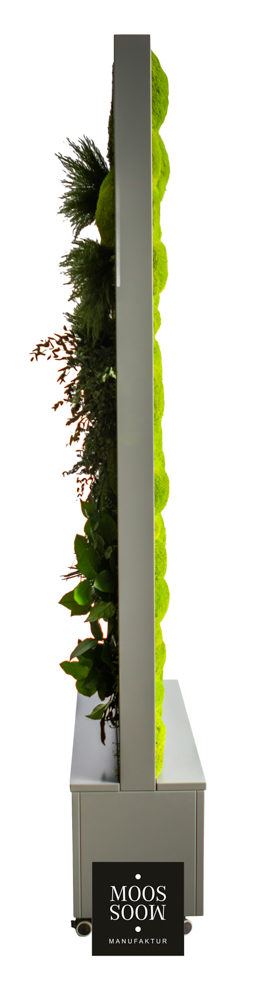 Raumteiler mit Pflanzenmoos und Ballenmoos seitliche Ansicht