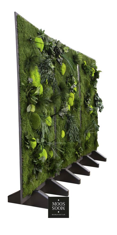 Drei Raumteiler aus Pflanzenmoos